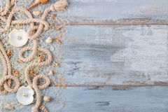Sea shells in a fishnet Stock Photo