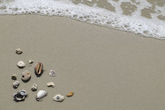 Sea shells and flip flops on sand. Summer beach background. Top Royalty Free Stock Photos
