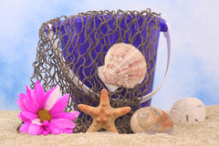 Sea Shells and Flower. Sand Pail With Net and Sea Shells on Sand With Blue and White Background stock image