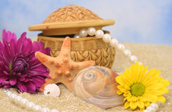 Sea Shells and Flowers Stock Photo