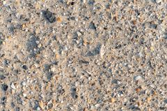 Sea Shells Fragments on Sand. Close-up of a lot of sea shells fragments scattered over sand of a tropical beach royalty free stock photo