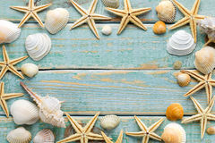 Sea shells frame Royalty Free Stock Photos