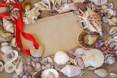 Sea shells. Frame. Royalty Free Stock Photos