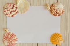 Sea shells frame on vintage shabby wood Stock Photos