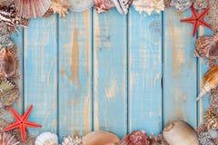 Sea shells frame Royalty Free Stock Image