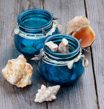 Sea Shells in Glass Jars Royalty Free Stock Image