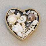 Sea shells and heart Royalty Free Stock Images