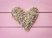 Sea shells in a heart shape Royalty Free Stock Photography