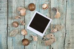 Sea shells and instant photo frame Stock Photos