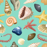 Sea shells marine cartoon clam-shell and ocean starfish vector illustration coral coralline seamless pattern background. Sea shells marine cartoon clam-shell and stock illustration
