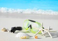Sea shells and mask Royalty Free Stock Image
