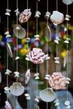 Sea shells mobile Stock Photos