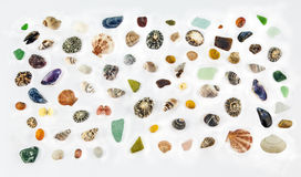 Sea Shells n more Seashells!. Plus glass n stones - all flotsam stock photography