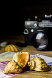Sea shells and old fotocamera on brown wooden table Stock Photography