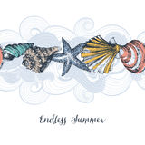 Sea shells pattern Stock Images
