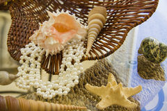 Sea shells and pearl necklace over straw basket Stock Image