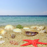Sumer beach scene Royalty Free Stock Images