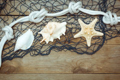 Sea shells and rope on old boards Royalty Free Stock Photography