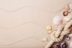 Sea shells and rope on sand. With space for text Royalty Free Stock Image