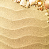 Sea shells with sand Stock Photos