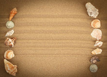 Sea shells with sand as background Royalty Free Stock Photography