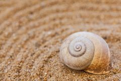 Sea shells with sand as background stock photos