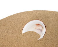 Sea shells with sand isolated on white Royalty Free Stock Images
