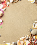 Sea shells with sand, rope as background Royalty Free Stock Photo