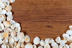Sea shells on sand. Summer beach background. Top view. Seashells on a wooden table - a reminder of the summer vacation. Stock Photo