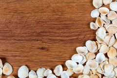 Sea shells on sand. Summer beach background. Top view. Seashells on a wooden table - a reminder of the summer vacation. Stock Photos
