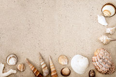 Sea shells on sand. Summer beach background. Top view Stock Photo