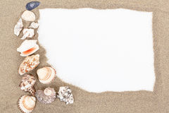 Sea shells with sand and white paper as background Royalty Free Stock Photography