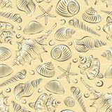 Sea shells seamless pettren Royalty Free Stock Photo