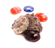 Sea shells and semiprecious stones Royalty Free Stock Image