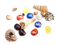 Sea shells and semiprecious stones Stock Images
