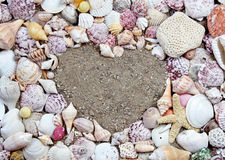 Sea shells in the shape of a heart Stock Photos