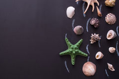 Sea shells And Starfish From Right Border Of Frame. Royalty Free Stock Photo