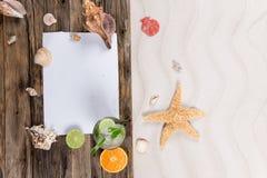 Sea shells and starfish Stock Photo
