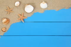 Sea shells and stars on the sand beach in summer vacation with c Royalty Free Stock Photo