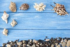 Sea shells and stones on a blue wooden background stones royalty free stock images