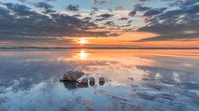 Sea Shells Sunset. Three sea shells on a New Zealand beach at sunset royalty free stock photo