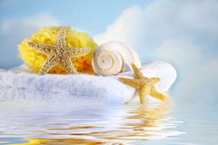 Sea shells and towel Royalty Free Stock Photo