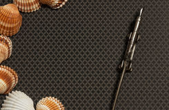 Sea Shells and Travel Notes. Large and small sea shells and ink pen on dark grey ground Royalty Free Stock Photo