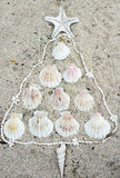 Sea shells in tree shape Stock Images