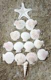 Sea shells in tree shape Royalty Free Stock Photography