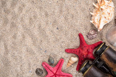 Sea shells with two red starfish and binocular. On sand Royalty Free Stock Photos