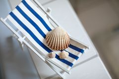 Sea shells of various sizes lie on a little vintage decoration striped beach chair in bathroom, top view. Shells lie on a little vintage decoration striped beach stock images