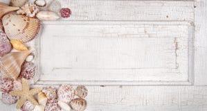 Sea shells on a vintage door Royalty Free Stock Image