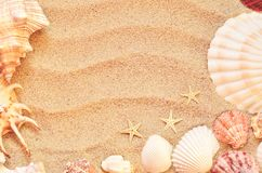 Free Sea Shells With Sand As Background Royalty Free Stock Photos - 108148748