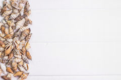 Sea shells on wooden background. Sea shells on white wooden background Stock Images